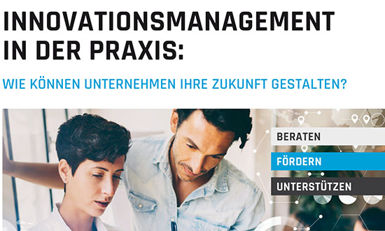 Innovationsmanagement in der Praxis-002